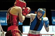 Boxerské MČR v Prostějově