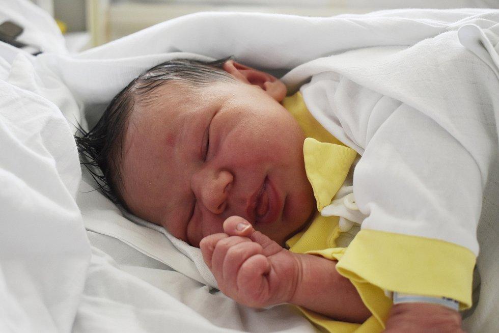 Šimon Reiter, Niva, narozen 22. června v Prostějově, míra 54 cm, váha 4450 g