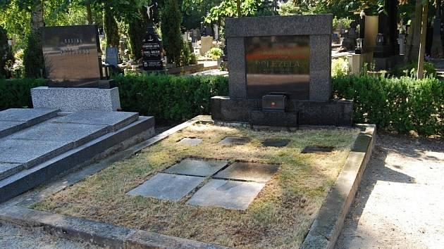 Hrob Aloise Doležela