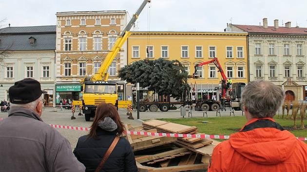 Instalace vánoční stromu na náměstí TGM v Prostějově. Ilustrační foto