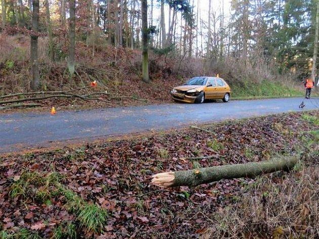 Strom spadl uBohuslavic na projíždějící peugeot
