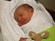 Vojtěch Hercík, Kostelec na Hané, narozen 7. července v Prostějově, míra 50 cm, váha 3750 g