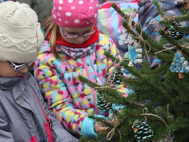 Stejně jako vloni i letos zdobily děti z mateřských a základních škol mini vánoční stromečky na náměstí TGM v Prostějově.
