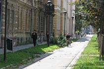 Rejskova ulice