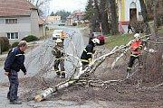 Letitý strom ve středu Studence vzal za své pod pilou místních hasičů.