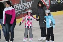 Oprášit brusle a otestovat kvalitu ledu se rozhodly na Štědrý den desítky milovníků zimních sportů