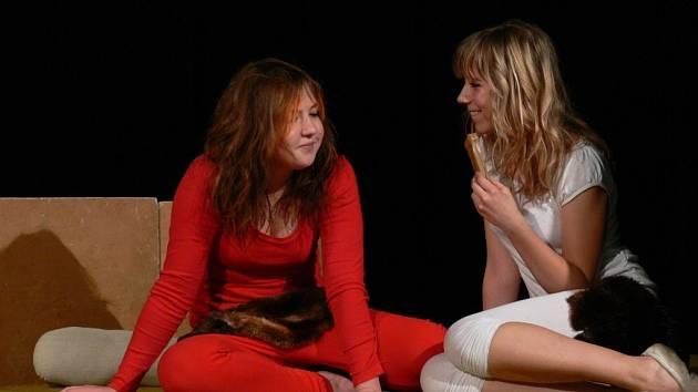 Divadelní soubor Pommes Frites z Plumlova vystoupil na Medartu s komedií Žena v trysku