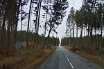 Video řádící Sabiny, které pořídila jednotka při výjezdu k popadaným stromům na silnici mezi Protivanovem a Žďárnou, obletělo celou republiku.