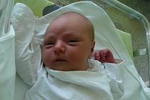 Anežka Nevrlá, Prostějov, narozena 22. července, 52 cm, 4125 g