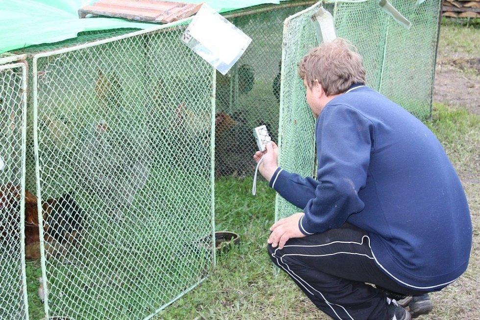 Plumlovské hody - výstava drobného zvířectva