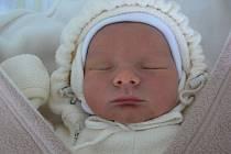 Lukáš Pán, Prostějov, narozen 30. prosince v Prostějově, míra 50 cm, váha 3400 g