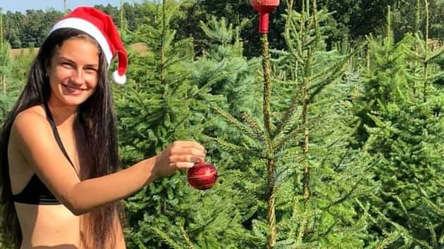 Žaneta Svobodová nabízí v parném létě vánoční stromky.
