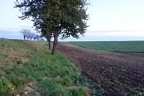 Nejen na jihu Prostějovska vnímají problémy s rozorávanými mezemi.