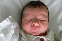 Alexandra Kováříková, Dobrochov, narozena 22. ledna v Prostějově, míra 50 cm, váha 3150 g