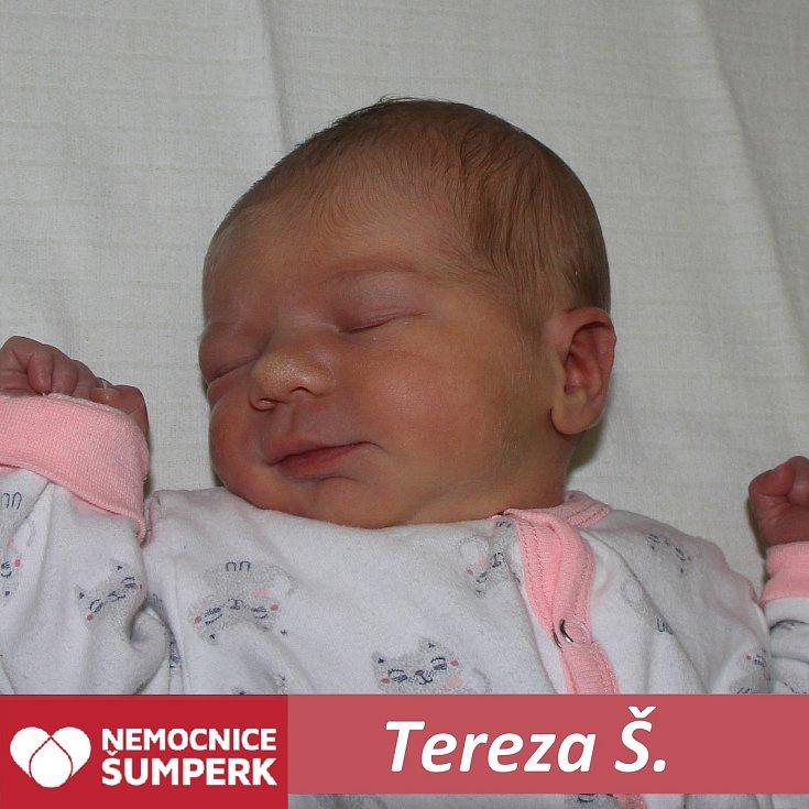 Tereza Š.Nový Malín