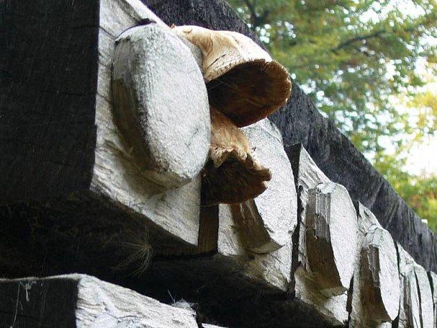 Houby na dřevěných sochách vprostějovském parku