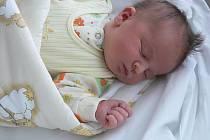 Barbora Přikrylová, Nezamyslice, narozena 23. června, 52 cm, 3800 g
