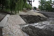 Revitalizace rybníka v Drozdovicích