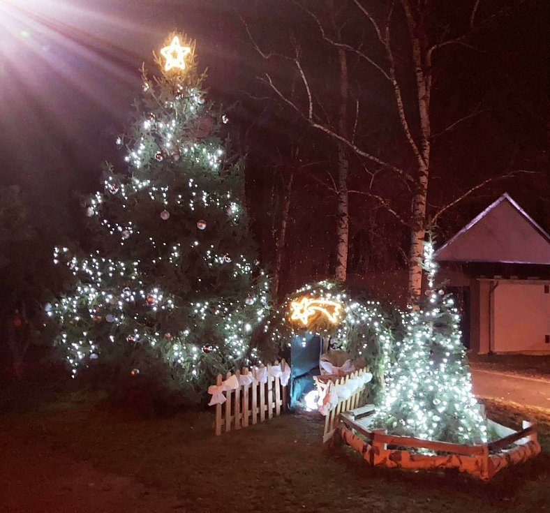 Vánoční strom 2020 - Lazníky