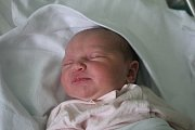 Alžběta Mohylová, Prostějov, narozena 8. listopadu v Prostějově, míra 52 cm, váha 3300 g