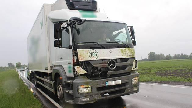 Srážka kamionu se srnou skončila pro zvíře smrtí. 22.5. 2019