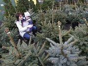 Třeťáci ze Základní školy Majakovského z Vrahovic předali seniorům z Domova důchodců v prostějovské Nerudově ulici vánoční dárky.