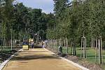 Stavba nové cesty březovou alejí v Kolářových sadech