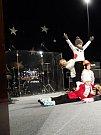 Vánoční koncert v Němčicích nad Hanou