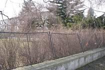 Zničený plot v Čelechovicích