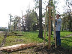 Křehké stromky chrání před počasím rohože.