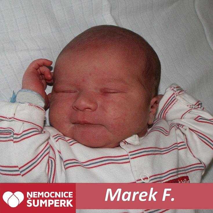 Marek F.Nový Malín
