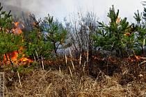 Požár lesa v Kobylničkách