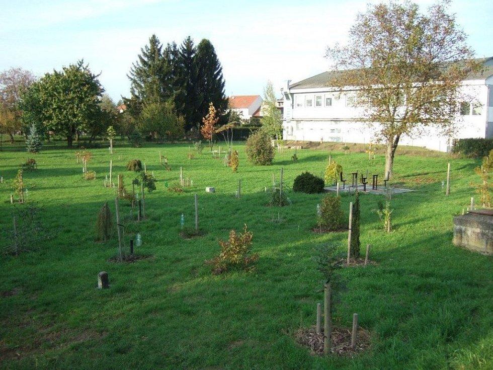 Arboretum ve Vrahovicích