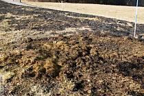 Požár trávy