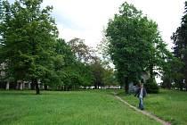 Spitznerovy sady v Prostějově