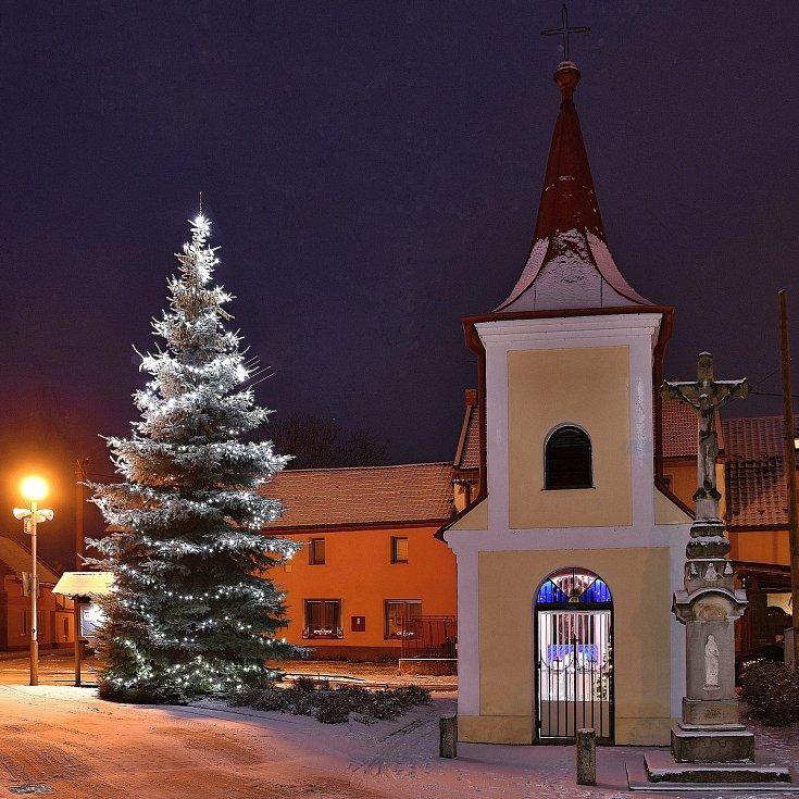 Vánoční strom 2020 ve Vrchoslavicích
