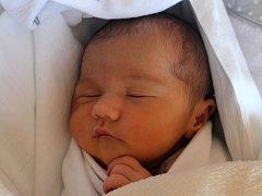 Klára Paníčková, Brničko, narozena 18. dubna, 50 cm, 3200 g