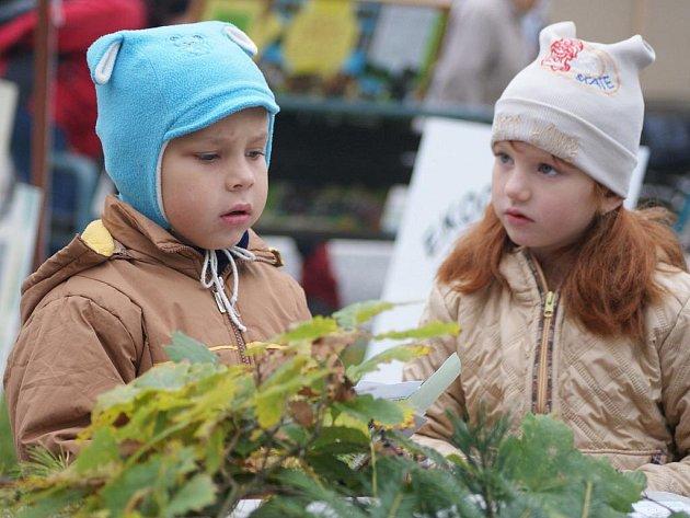 Den stromů na náměstí T. G. M. v Prostějově