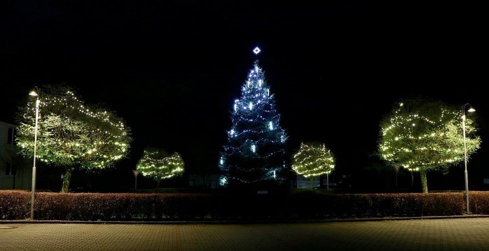 Vánoční strom 2020 v Oseku nad Bečvou