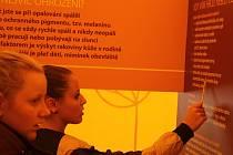Liga proti rakovině s několika stany na náměstí TGM v Prostějově