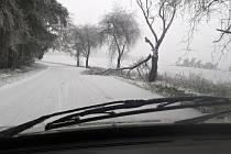 Ledovka, námraza a sníh na Drahansku - 2. prosince 2014