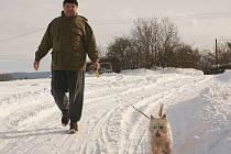 Psí procházka v zimě