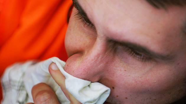 Za poslední třicet let stoupl počet postižených některou z alergií
