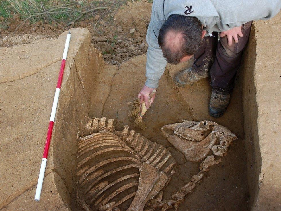 V bývalé cihelně v Držovicích našli archeologové ojedinělý bojovnický pohřeb lukostřelce