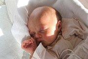 Adéla Trundová, Malé Hradisko, narozena 1. listopadu, míra 52 cm, váha 3600 g