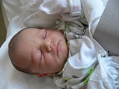 Kateřina Štvrtecká, Prostějov, narozena 10. února, 50 cm, 3700 g