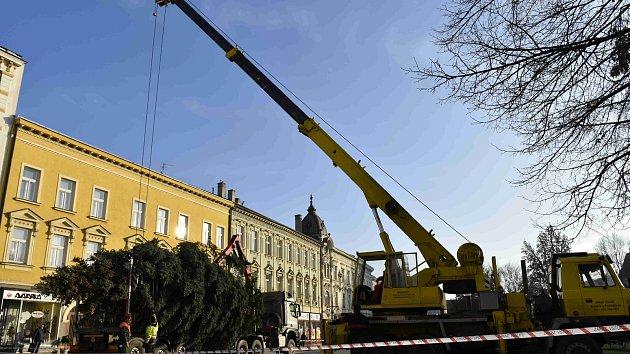 Instalace vánočního stromu v Prostějově 2019