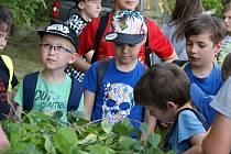 Den dětí s vojenskými lesy v lokalitě Osina v Krumsíně - 4. 6. 2019