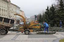 Odstrojování a kácení prostějovského vánočního stromu