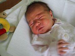 Karolína Hájková, Prostějov, narozena 17. července, 50 cm, 3250 g